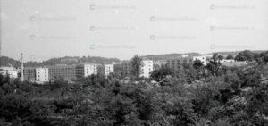 lviv-panorama-11
