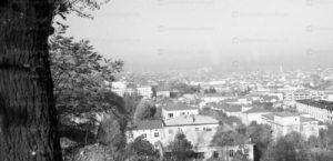 lviv-panorama-20