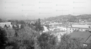 lviv-panorama-21