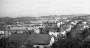 lviv-panorama-22